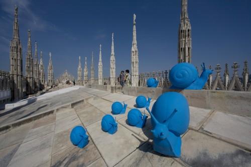 Chiocciole Duomo 4.jpg