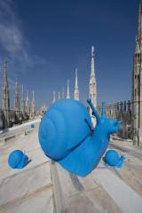 Chiocciole Duomo 3.jpg